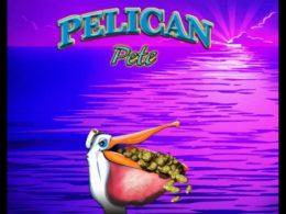 Pelican Pete best free pokies