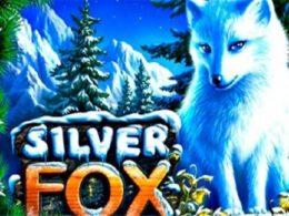Silver Fox Free Aussie Pokies
