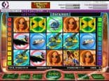 Caribbean Nights Best Free Slot Machines