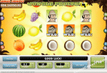Jungle Fruits Best Free Slots