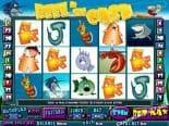 Reel in the Cash Best Online Slots Australia
