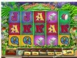Samba Spins Best Online Slots Australia