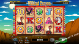 Wild Cat Canyon Best Free Slots