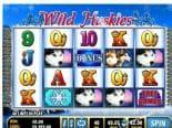 Wild Huskies Best Free Slot Machines