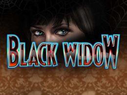 Black Widow Best Free Pokies