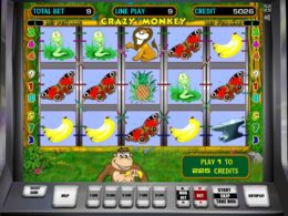 Crazy Monkey Best Free Slots