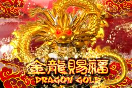 Dragon Gold slot