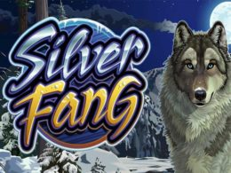 Silver Fang slots