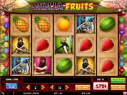 Ninja Fruits Slots