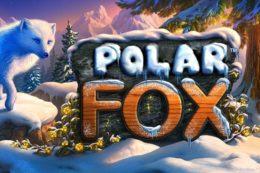 Polar Fox best free pokies