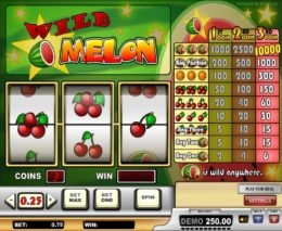Wild Melon slots