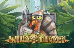 Wild Turkey best free pokies